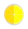 Lemon Orange Fruit Flat Icon yellow ripe lemon vector image