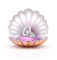 marriage rings on realistic seashell vector image