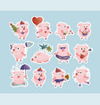 new year 2019 set with christmas pigs vector image vector image