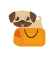 puppy little tongue out yellow pet carrier vector image vector image