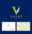 v letter chamomile spa cosmetic seamless pattern vector image vector image