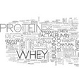 whey protein text word cloud concept vector image vector image