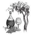 wine bottle and wineglass vector image