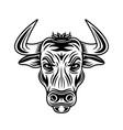 bull head monochrome in vector image
