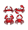 crab sea design graphic template vector image