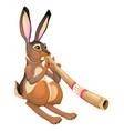 funny hare is playing with the didgeridoo vector image vector image