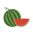 logo for whole ripe red fruit vector image vector image