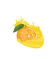 orange juice splash vector image vector image