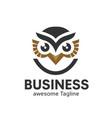 owl logo in modern colorful logo design vector image vector image