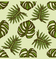 seamless pattern with hand drawn colored monstera vector image vector image