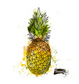 beautiful colored watercolor pineapple vector image vector image