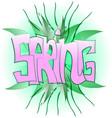 green spring graffiti vector image