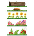 set of nature decoration vector image vector image