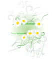 chamomiles banner vector image
