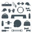 accessories for fitness silhouette icons vector image vector image