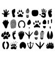 Animal tracks vector | Price: 1 Credit (USD $1)