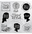 Beauty salon coal vector image