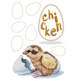 chick hatched watercolor vector image