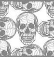 detailed hand-drawn pattern of skull vector image vector image