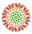 elements for design stylized flower mandala vector image vector image
