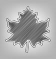 maple leaf sign pencil sketch imitation vector image