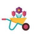 spring garden wheelbarrow icon vector image