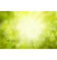 Sunny Green nature background selective vector image vector image