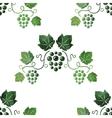 Watercolor style green grape vines seamless vector image vector image