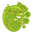 with a chameleon and beautiful vector image vector image