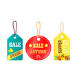 sales promotion in fall concept tags hanging text vector image