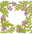 astragalus frame vector image vector image