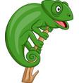 cartoon green chameleon vector image vector image