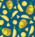 Colorful seamless pattern with pineapple slices vector image