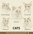 set hand drawing cats 4 vector image