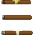 Set of Cuban cigars Isolate on white background vector image vector image