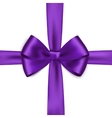 Shiny purple satin ribbon on white background vector image vector image