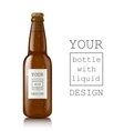Template of glass beer bottles vector image vector image