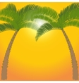 Two palm tree on orange background vector image vector image