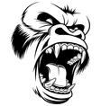 Ferocious gorilla head vector image vector image