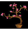 Flowers on a branch vector image vector image