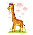 giraffe standing on meadow and chews grass vector image vector image