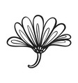 herb calendula icon simple style vector image