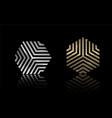 hexagon gold and silver 2 vector image vector image