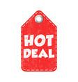 hot deal hang tag vector image vector image