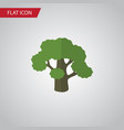 isolated oak flat icon tree element can be vector image