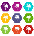 palm icon set color hexahedron vector image