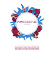 vertical banners with with pomegranate vector image vector image