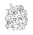 Tree leaves coloring book vector image