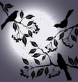 Birds on the branch during summers night vector image vector image