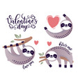 cute sloth bear animal with a heart vector image vector image